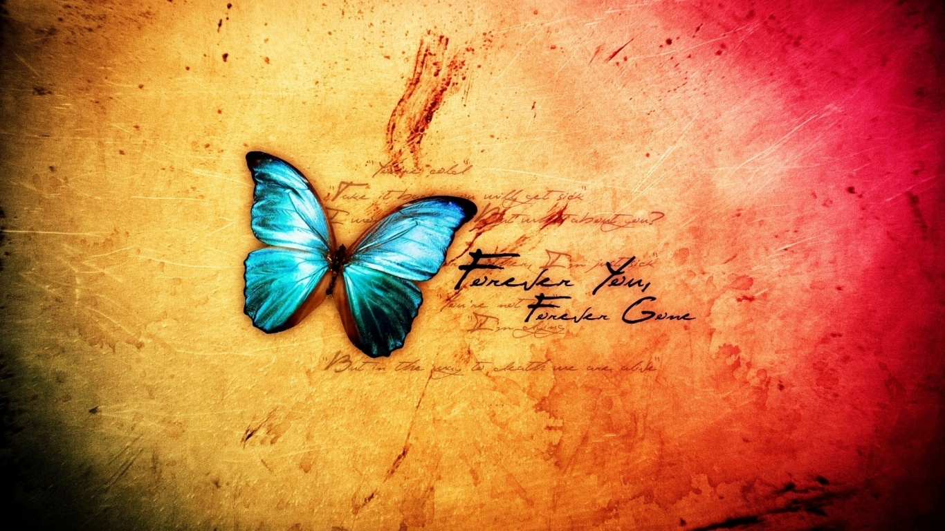 Blue butterfly wallpapers