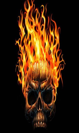 Fire Flames Skull View bigger   the fire skull 307x512