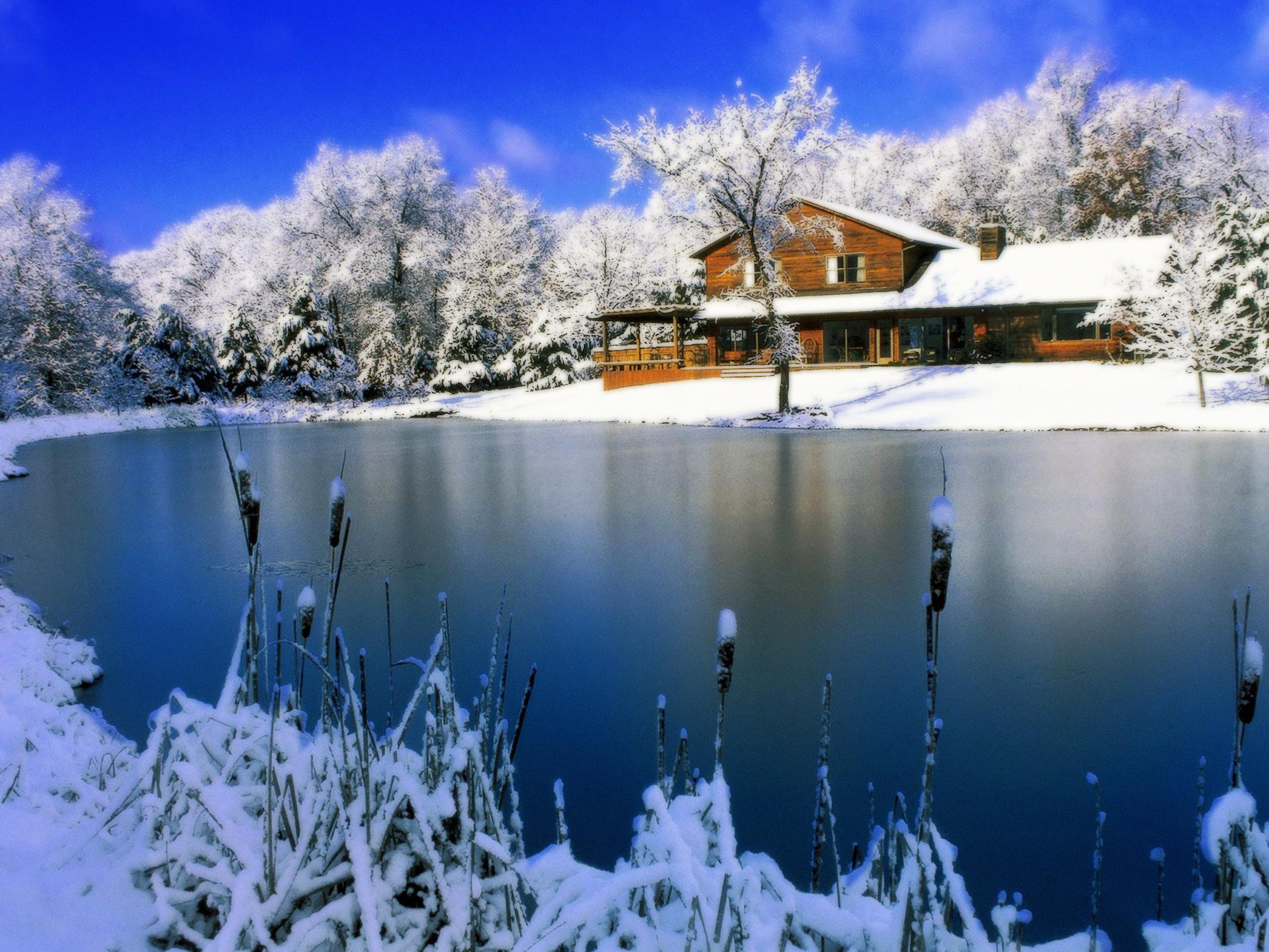 free desktop wallpaper winter scenes   wwwwallpapers in hdcom 2560x1920