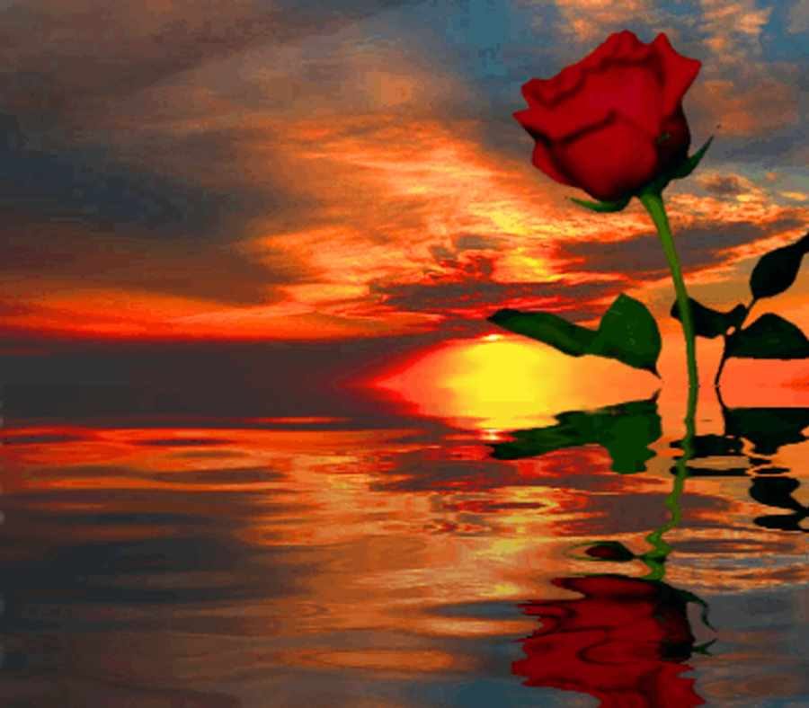 Twitter Sunsets and Sunrises Backgrounds and Background Images
