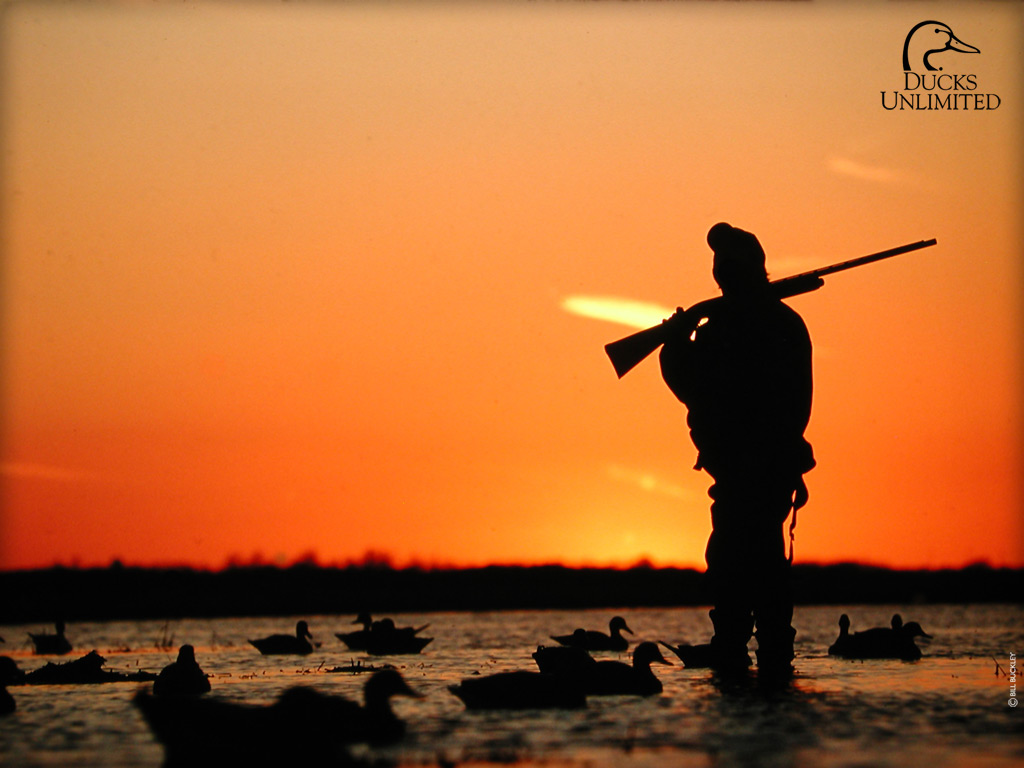 DU Hunting Wallpaper 1024x768