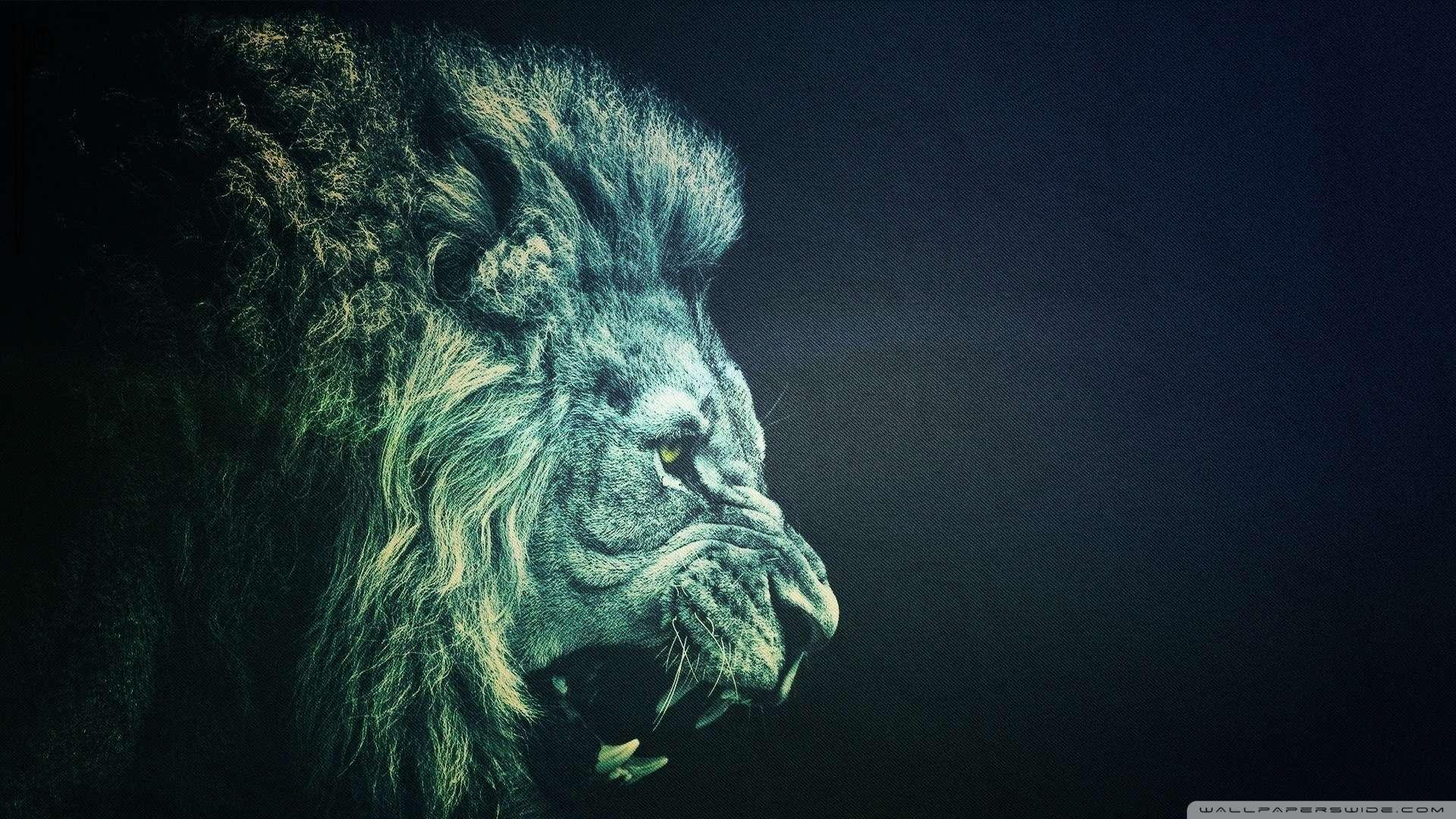 Download now Lion 14 Wallpaper 1080p HD Read description infos and 1920x1080