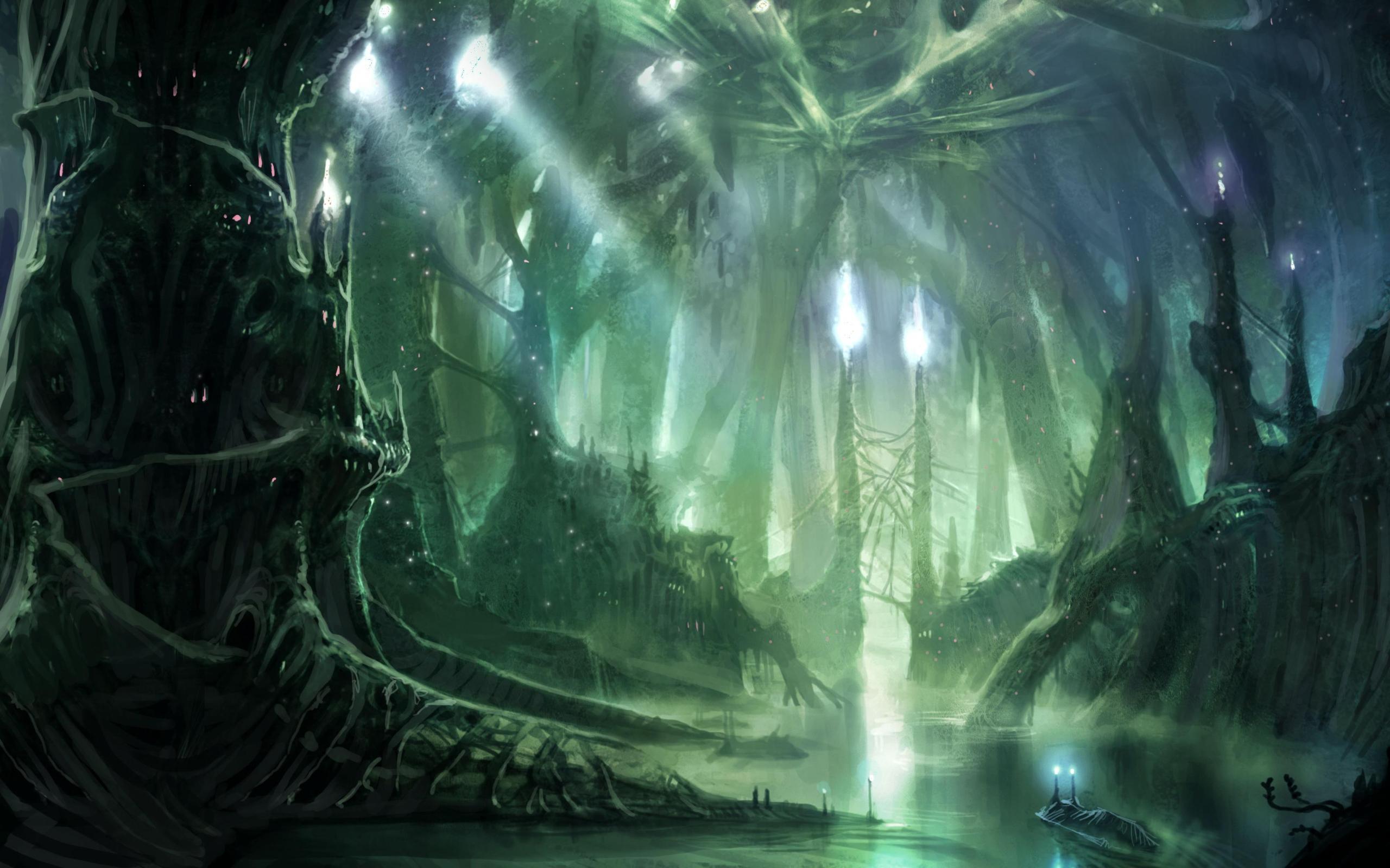Deep forest 2560x1600