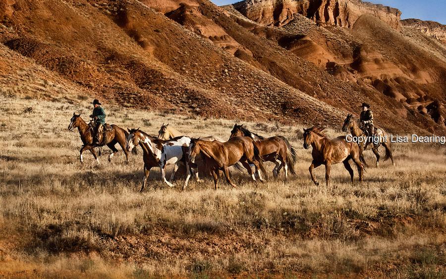 Amazoncom Cowboy Cowboys Horse Riders Western Wall Decal Home 900x564