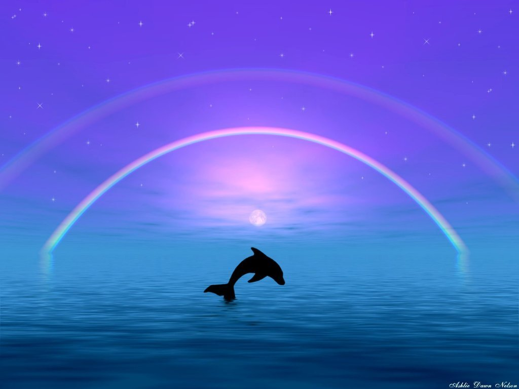 Dolphins   Dolphins Wallpaper 10345767 Chainimage 1024x768