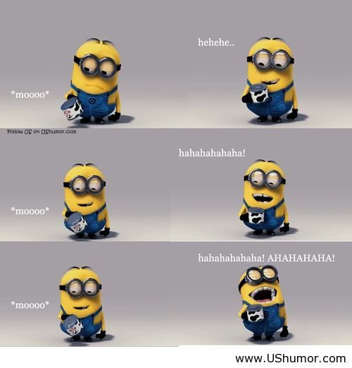 Funny minions wallpaper with smile US Humor   Funny pictures Quotes 500x522