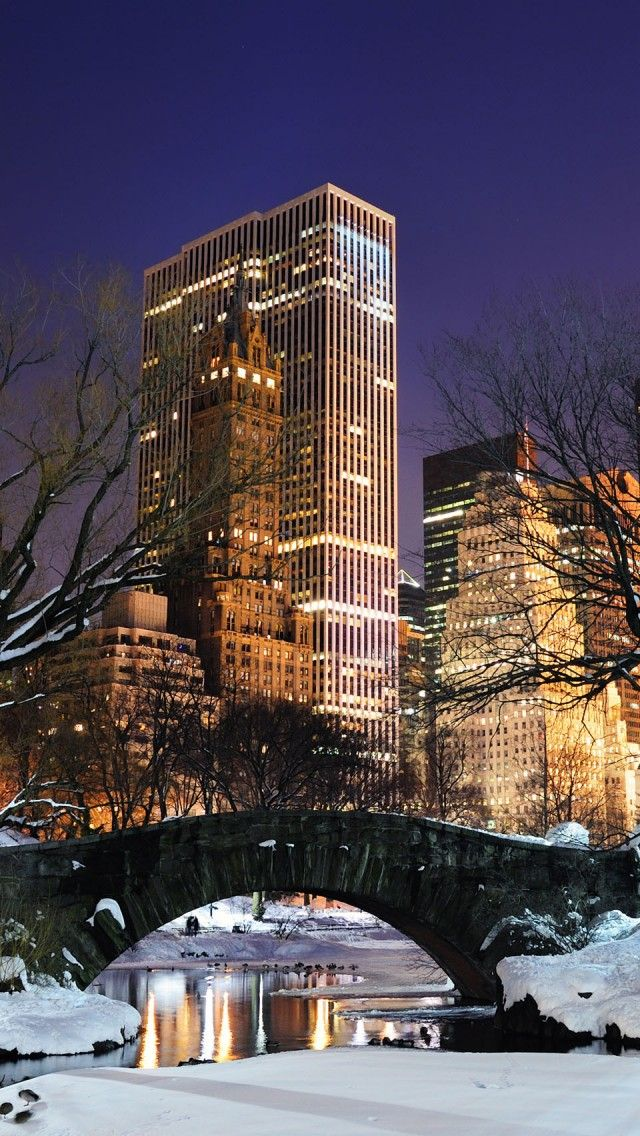 New York City at Night from Central Park in the snow Travel 640x1136