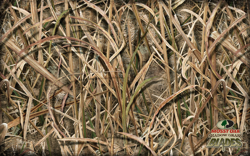 Go Back Gallery For Mossy Oak Desktop Wallpaper 800x500