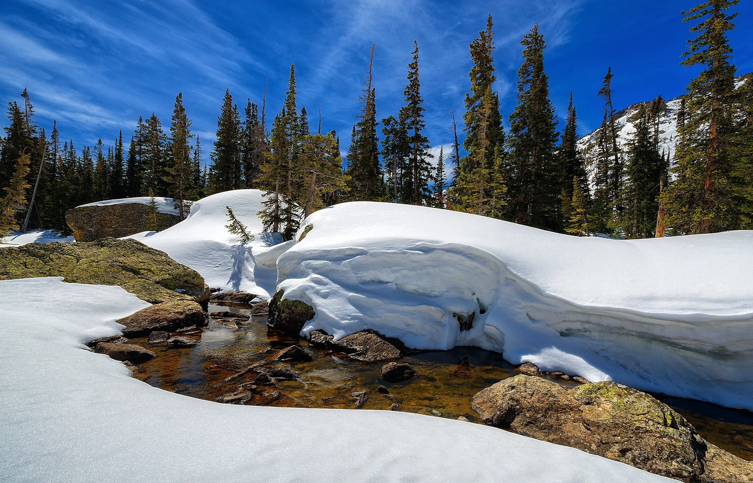 Free Mountain And Winter Wallpapers Hd: Colorado Winter Wallpaper