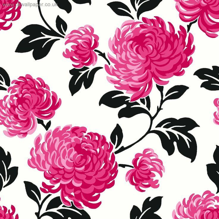 Pink And Black Image download HD at digitalimagemakerworldcom 736x736