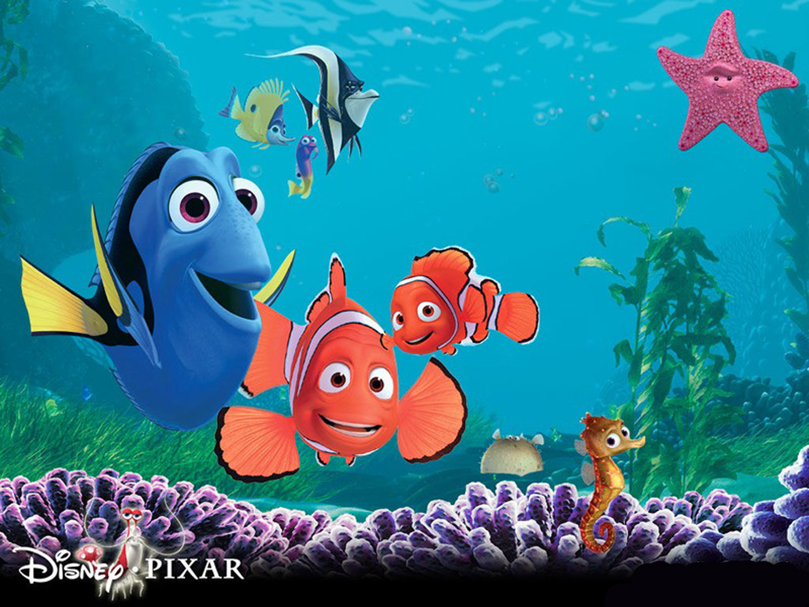 Finding Nemo 3D Movie Poster HD Wallpapers Cartoon Wallpapers 1600x1200