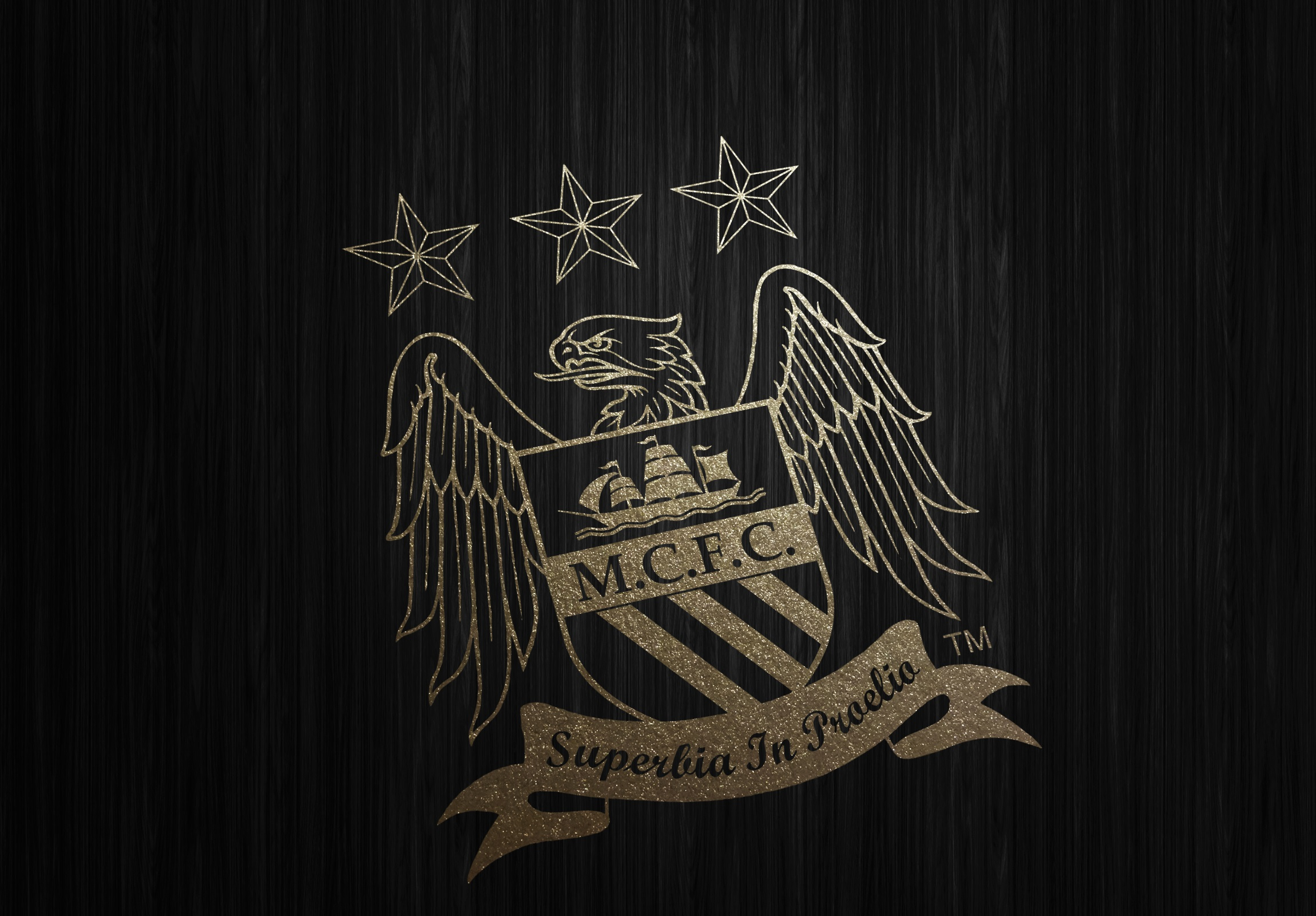 Manchester City Wallpapers 2016   HD Wallpapers 2300x1600