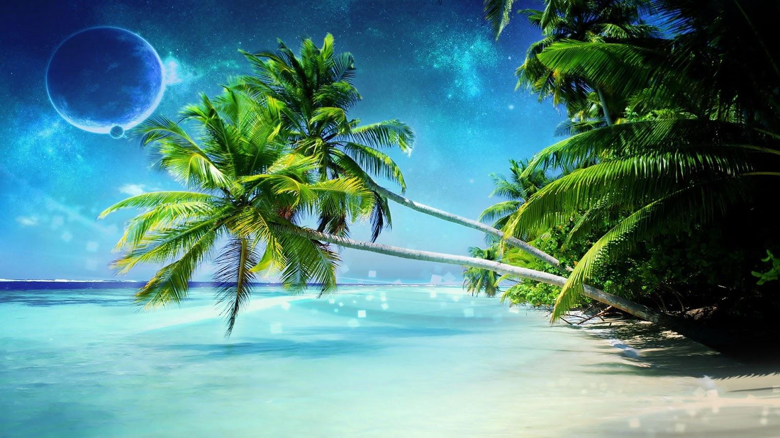 [49+] Free 3D Beach Wallpaper On WallpaperSafari