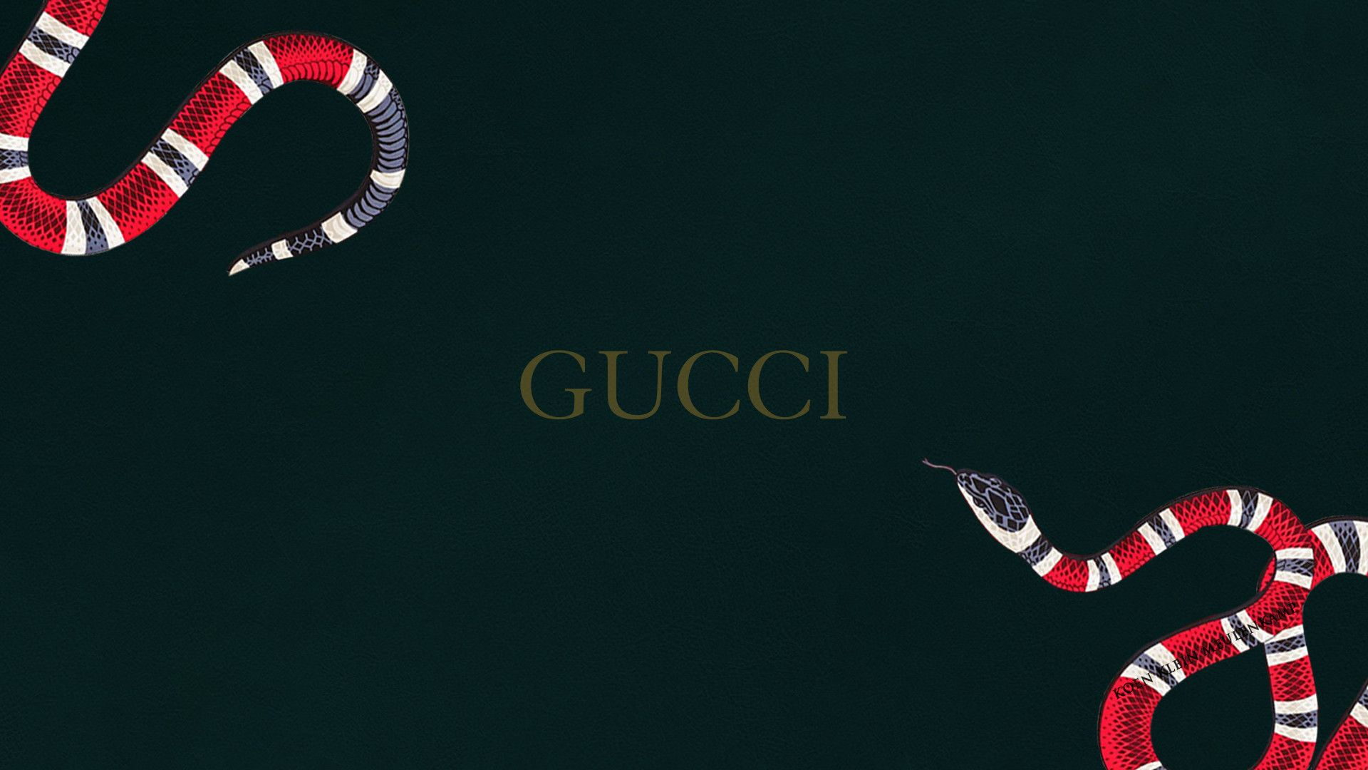 1920x1080 13 Gucci Snakes wallpapers PSD files by fkkm1999 1920x1080