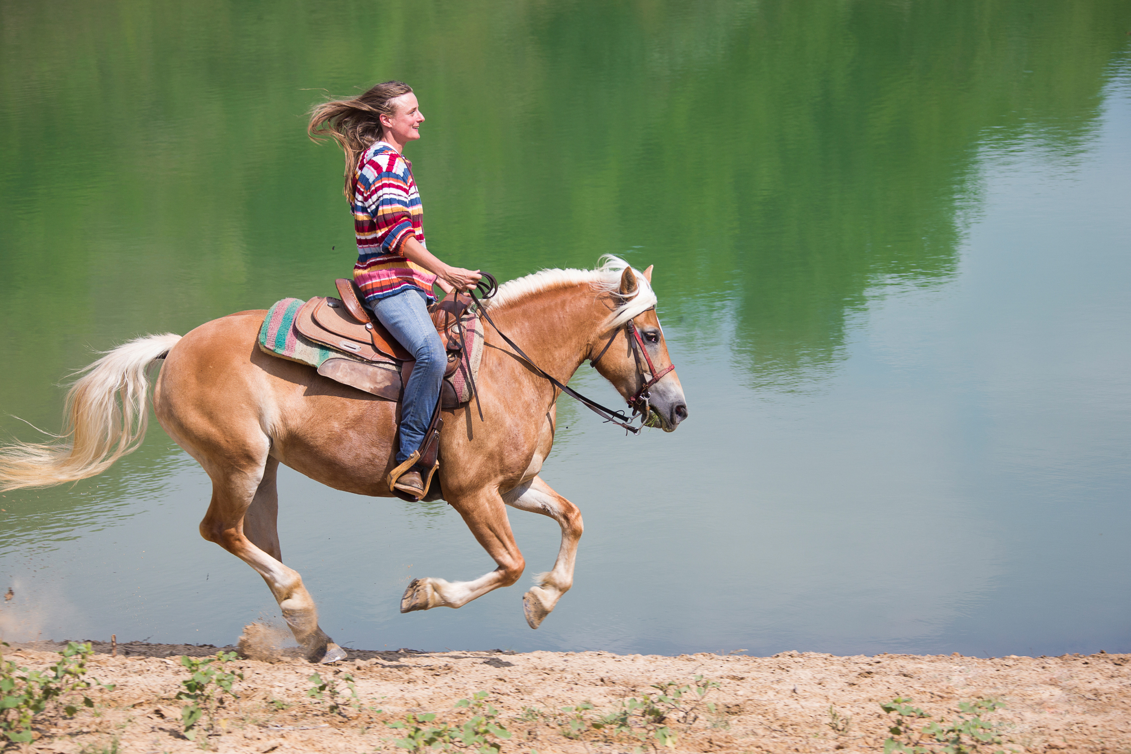 13 Horse Riding HD Wallpapers Background Images 2250x1500