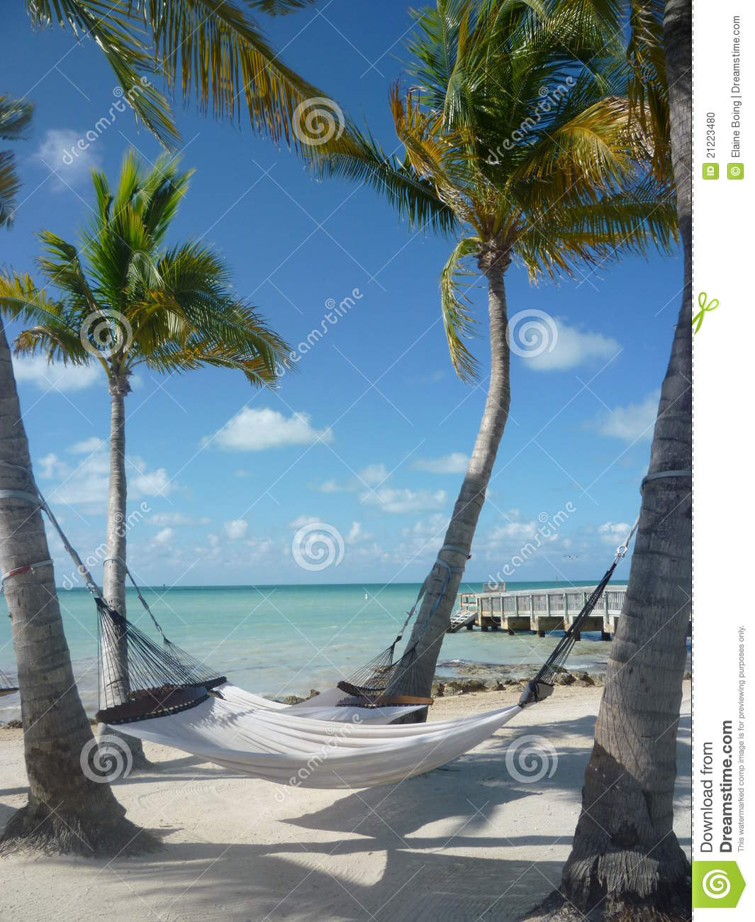 Beach Hammock Wag Wallpaper 1065x1300