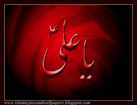 Islamic Pictures and Wallpapers name of Ali as wallpapers 532x407