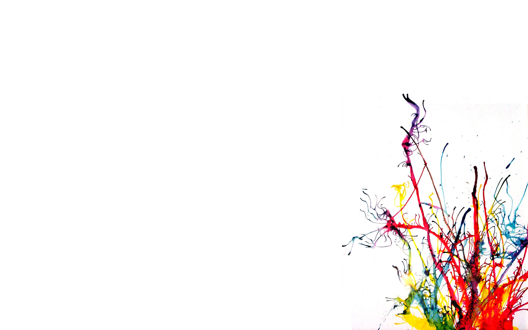 Color Palette For Website Color Splash Wallpaper Wallpapersafari