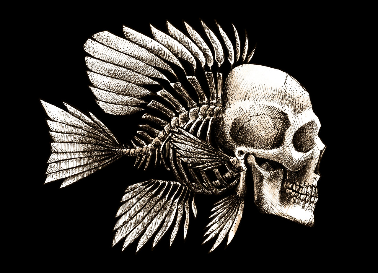 Free Download Fish Skull Design By Beanarts Designs