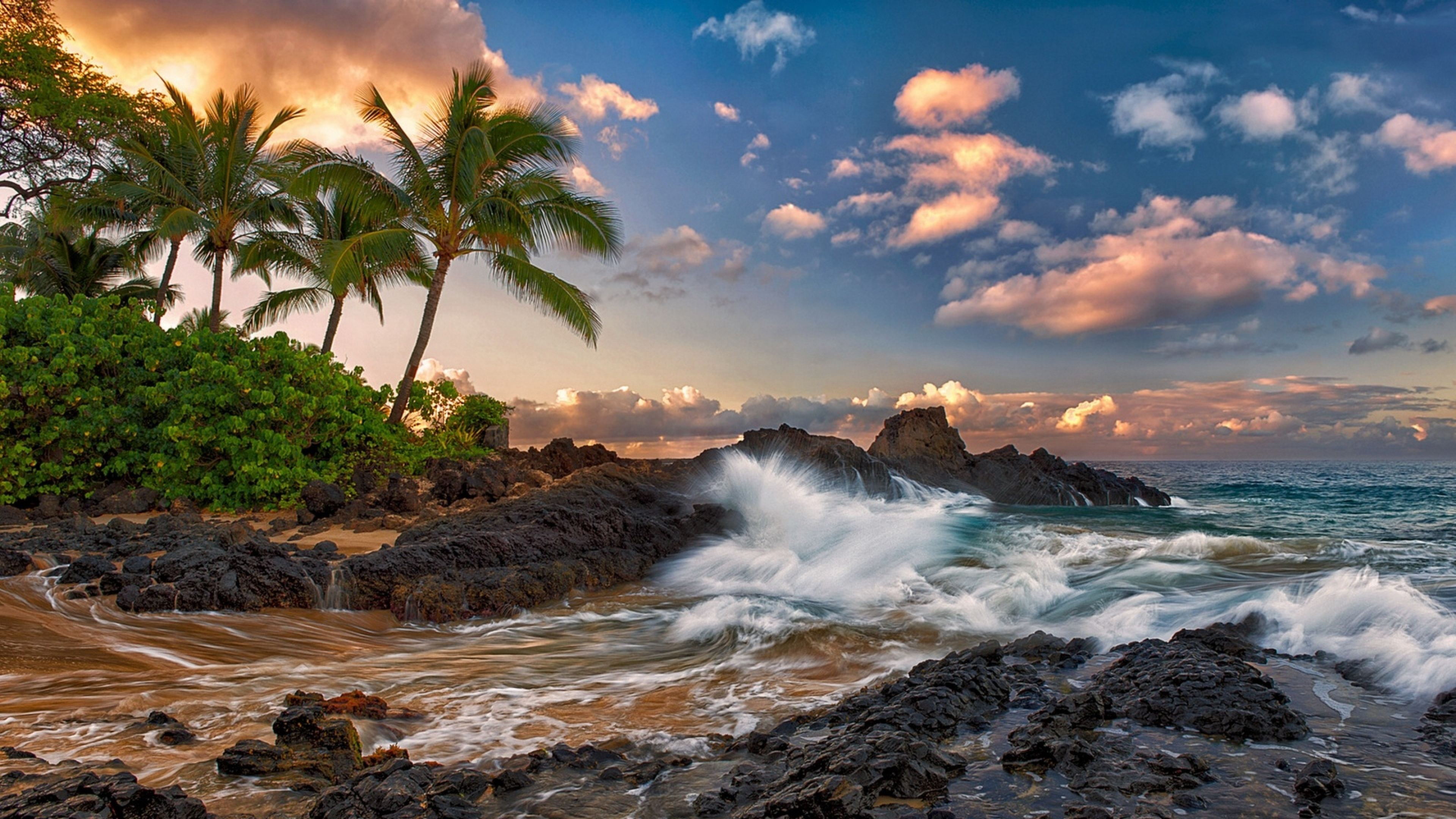 Palm trees Clouds Tropical Coast Wallpaper Background 4K Ultra HD 3840x2160