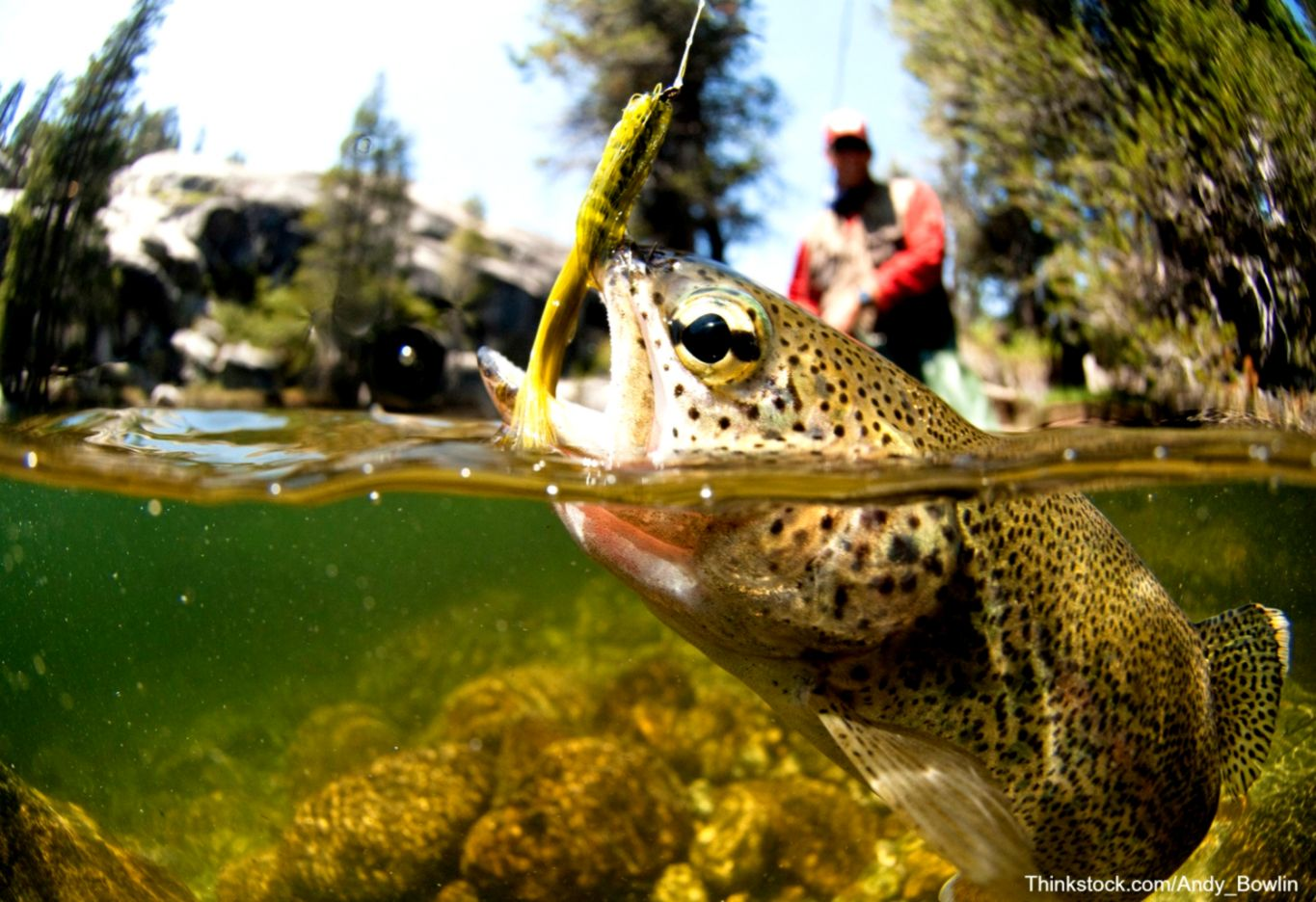 Orvis Fly Fishing Wallpaper Wallpapers Power 1365x936
