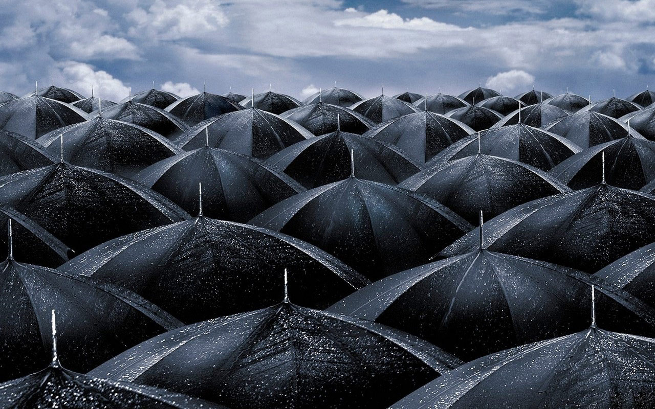 Rain Umbrellas Desktop HD Wallpapers   Rain Umbrellas Desktop 1280x800