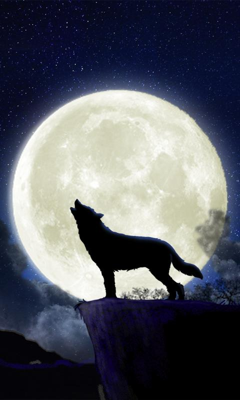 Howling Wolf Live Wallpaper   Android Apps on Google Play 480x800