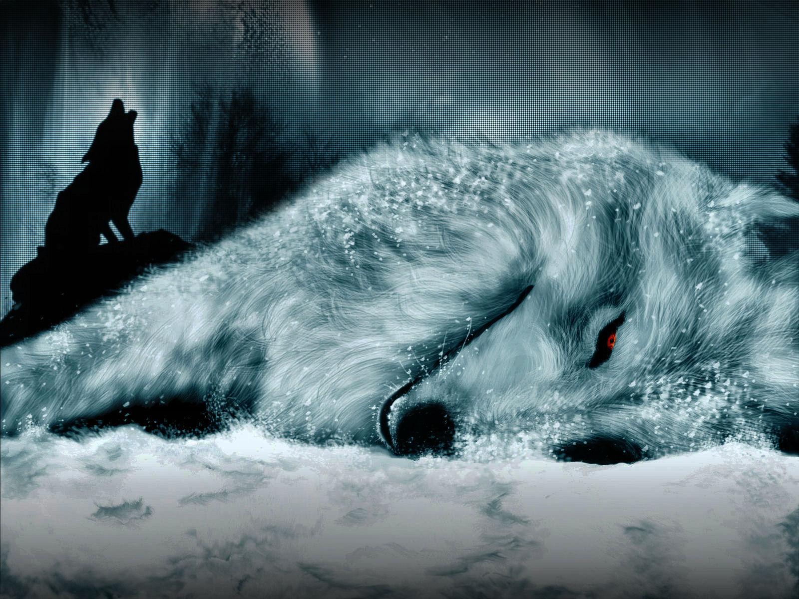 wolf Wallpaper Background 1922 1600x1200