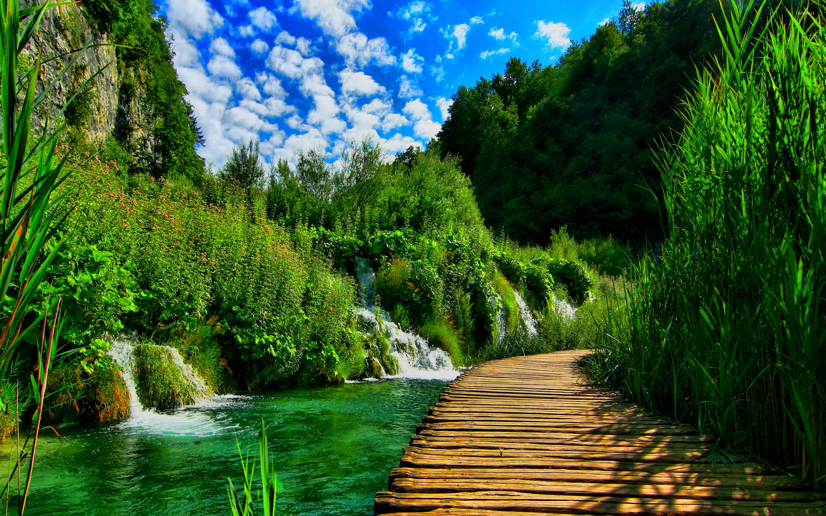 Plitvice Lakes National Park wallpaper   Nature wallpapers   22851 2880x1800