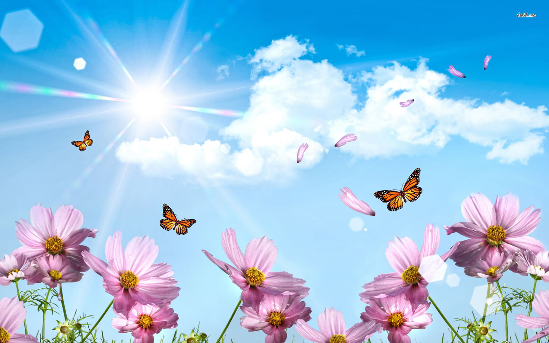 Spring Wallpaper   Spring Hd 149850   HD Wallpaper Download 1920x1200