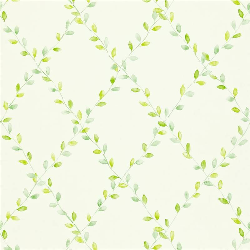 Green   212438   Spring Trellis   Options 11   Sanderson Wallpaper 800x800