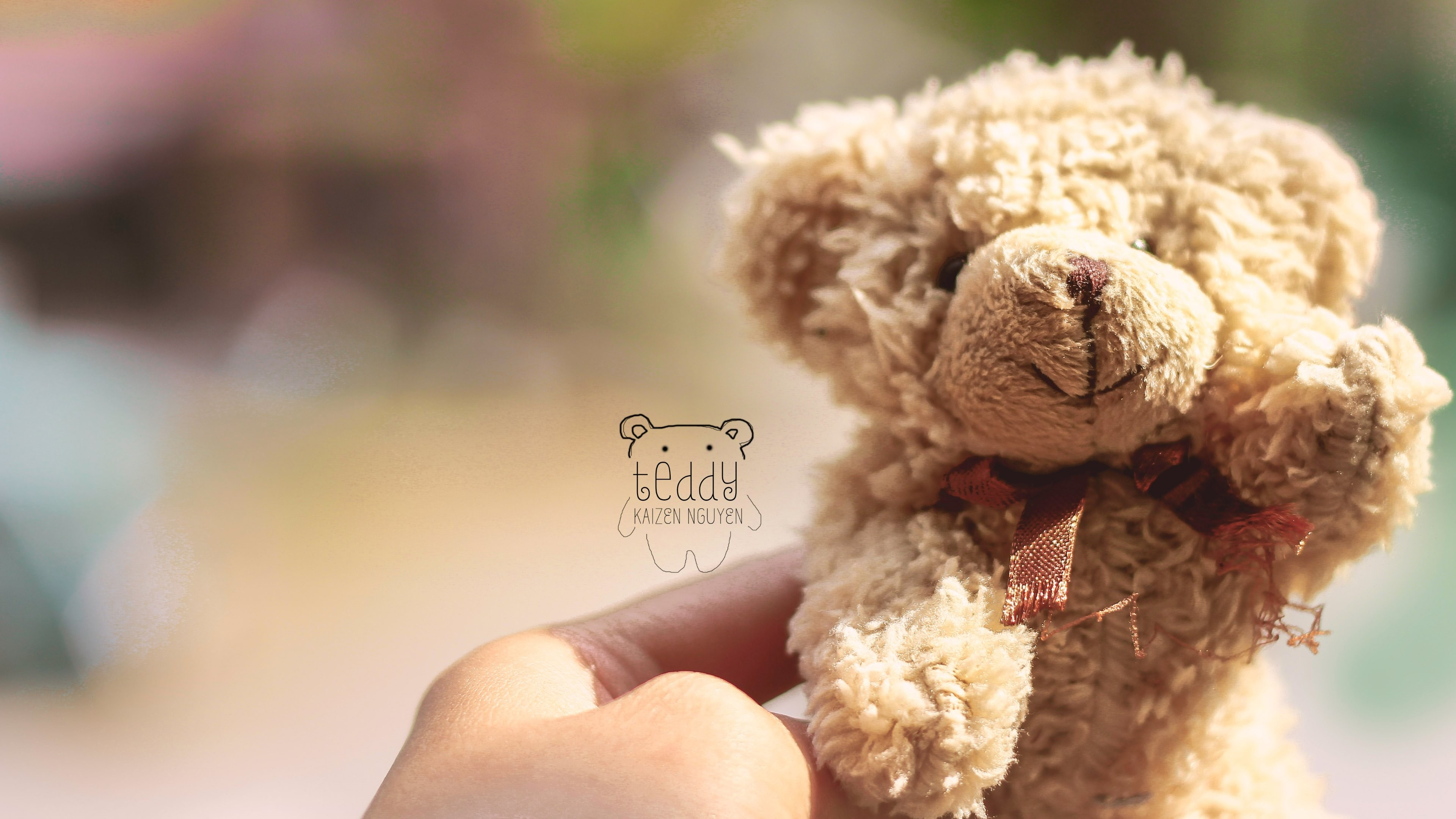 Bunny Cute Pink Teddy Bear Hd Wallpapers For Desktop: Teddy Bear Wallpapers For Desktop