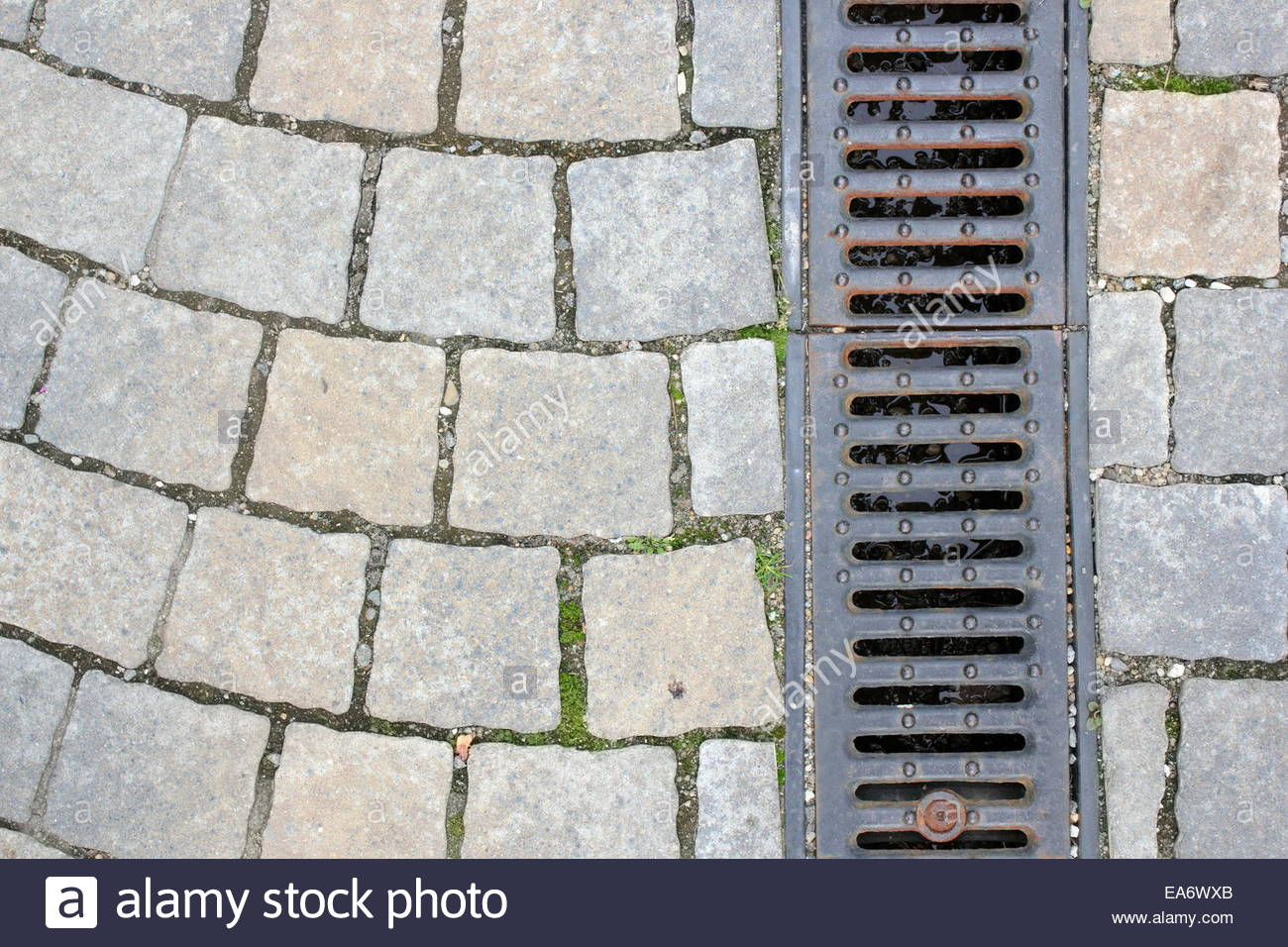 drainage on pedestrian street textured background Stock Photo 1300x956