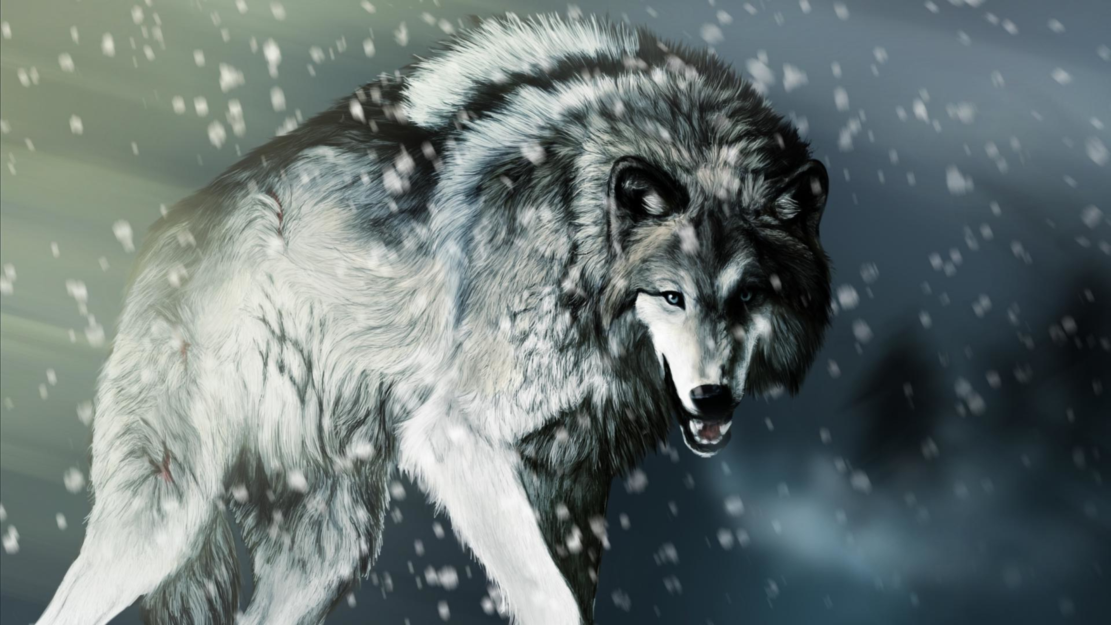 58 4K Wolf Wallpapers on WallpaperPlay 3840x2160