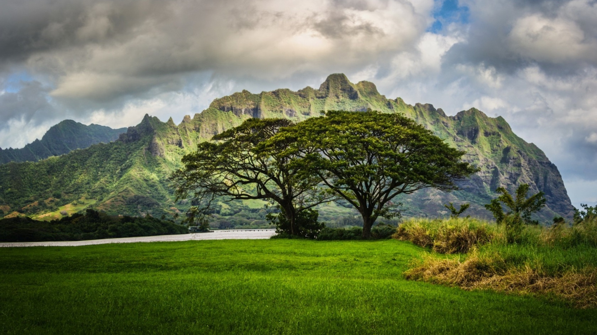 Mountains trees oahu hawaii landscape clouds wallpaper 1920x1080 1920x1080
