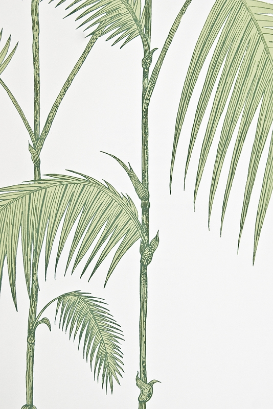 Palm Tree Wallpaper For Walls Palm wallpaper contemporary 534x801