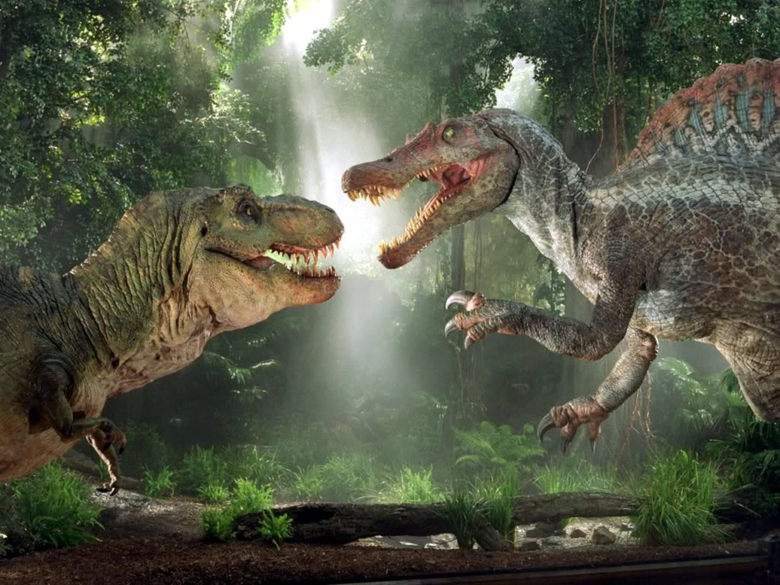 T Rex Wallpapers Fun Animals Wiki Videos Pictures Stories 1600x1200