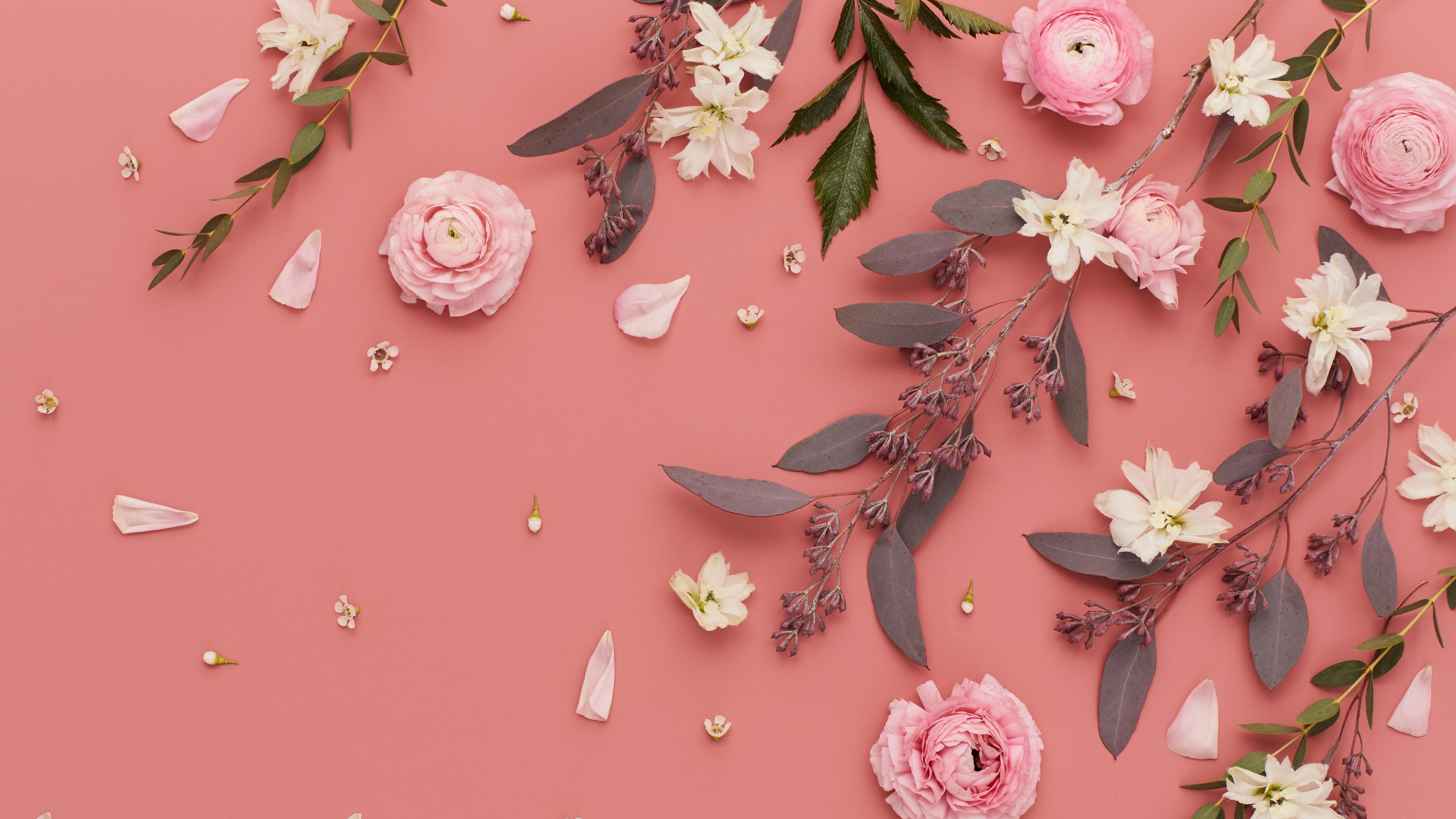 Nice   Beautiful Wallpapers Desktop Flower Background Hd 11635 5120x2880