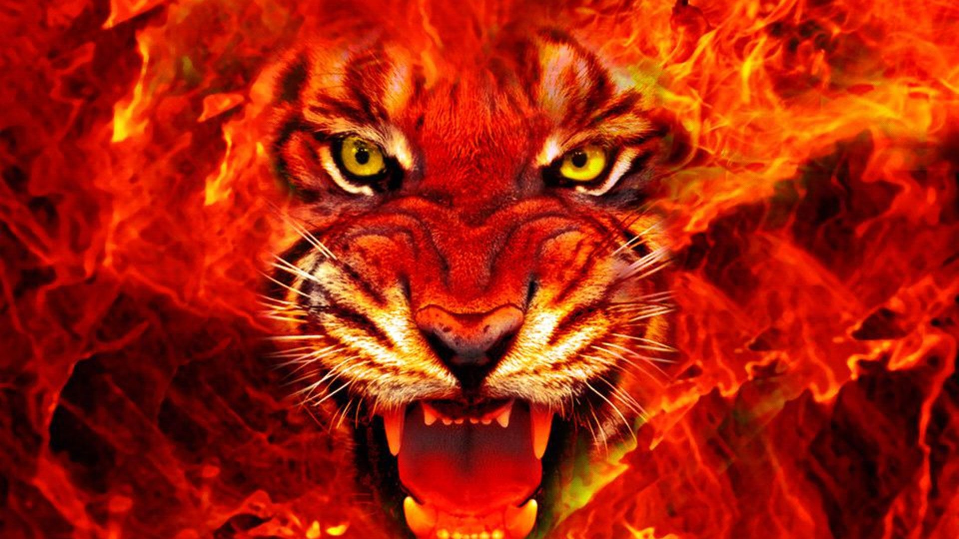 Wallpapers HD Fire King Images Pictures Background Images Mac Pc 1920x1080