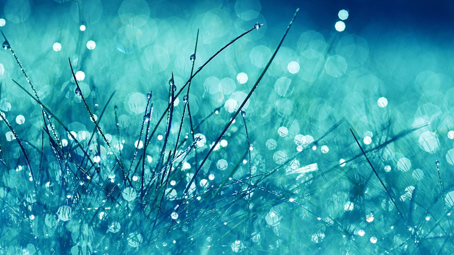 Fresh Wallpapers PC Fresh Amazing Wallpapers LLGL 1920x1080