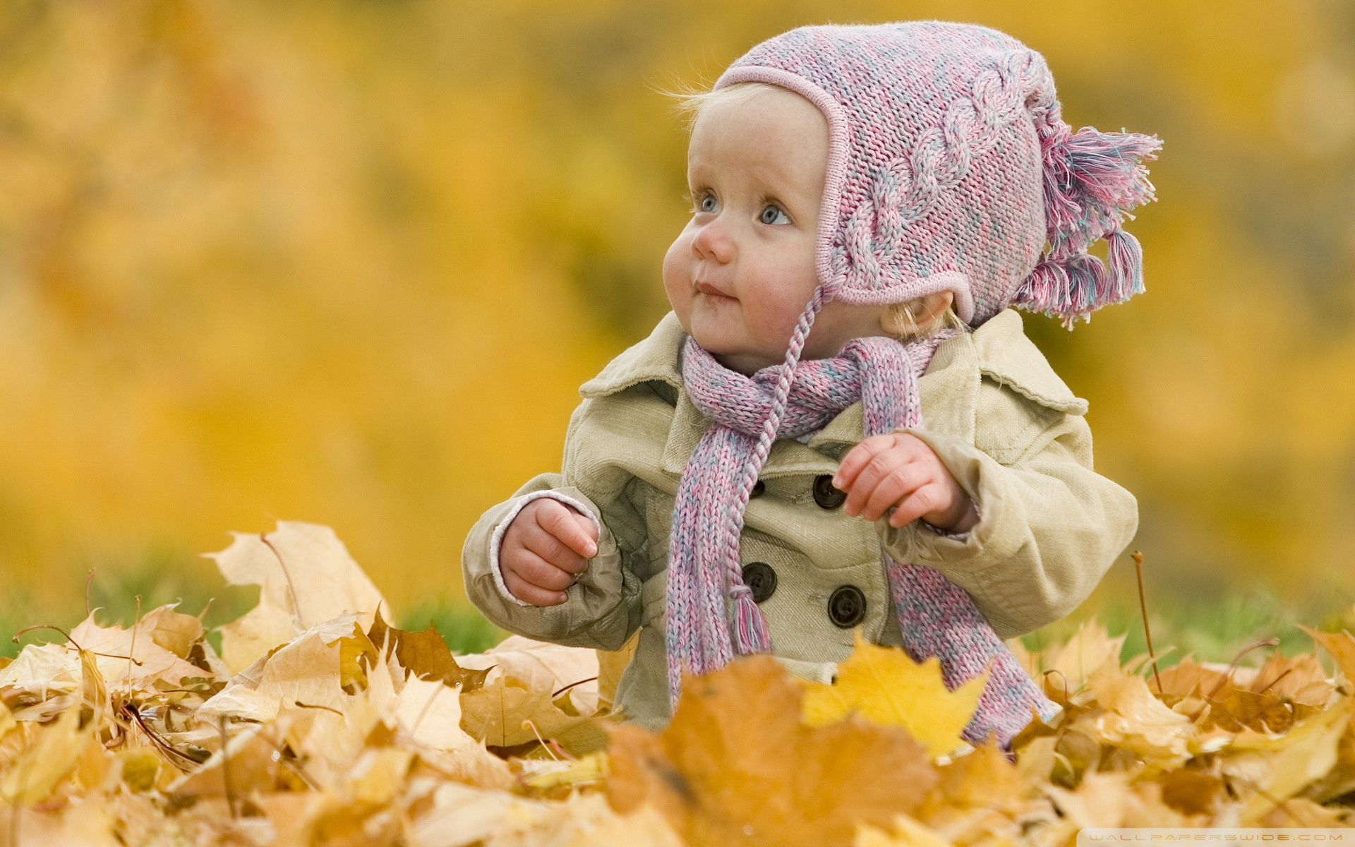 Cute Baby 4K HD Desktop Wallpaper for 4K Ultra HD TV Tablet 1920x1200