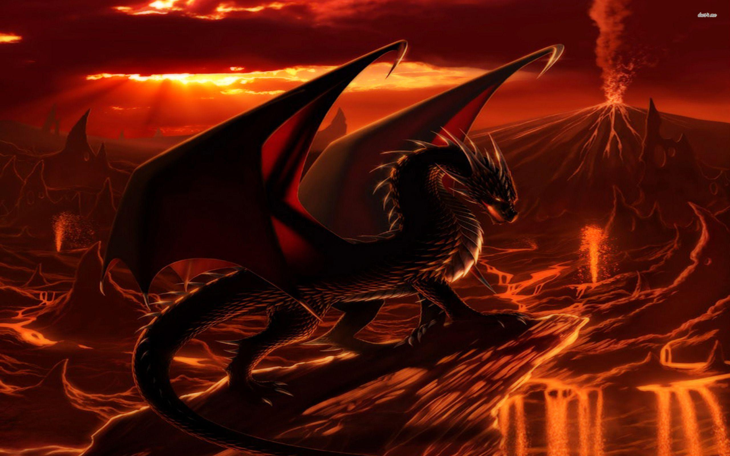 Fire Dragon Wallpapers 2560x1600