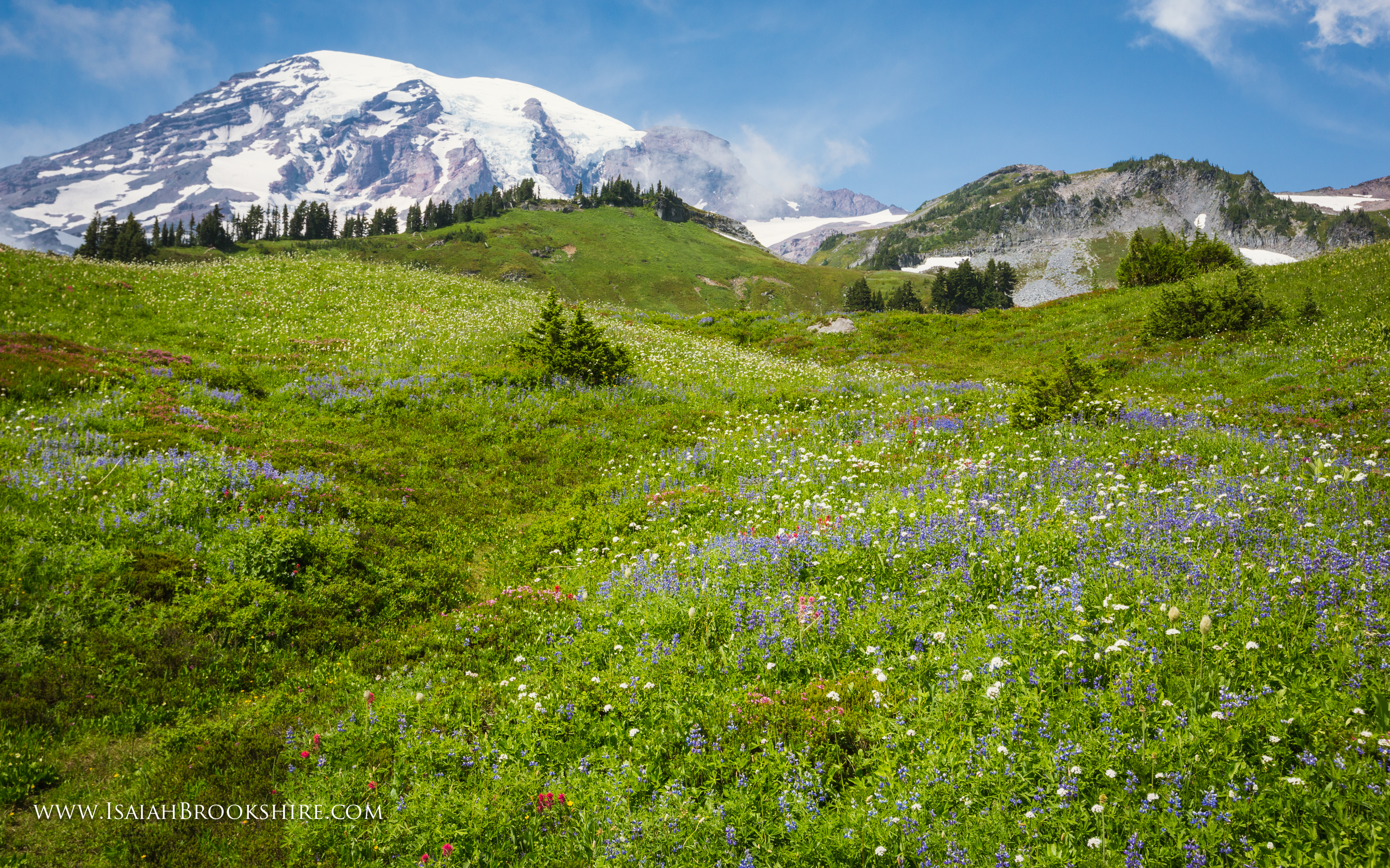 mount snow trail map with Mount Rainier Meadow Flowers Wallpaper on Grands Mulets Mont Blanc together with 882112 further Best Indoor Water Parks Near Nyc besides Schweitzer Mountain Trail Map 2 besides Snow Bike Route.