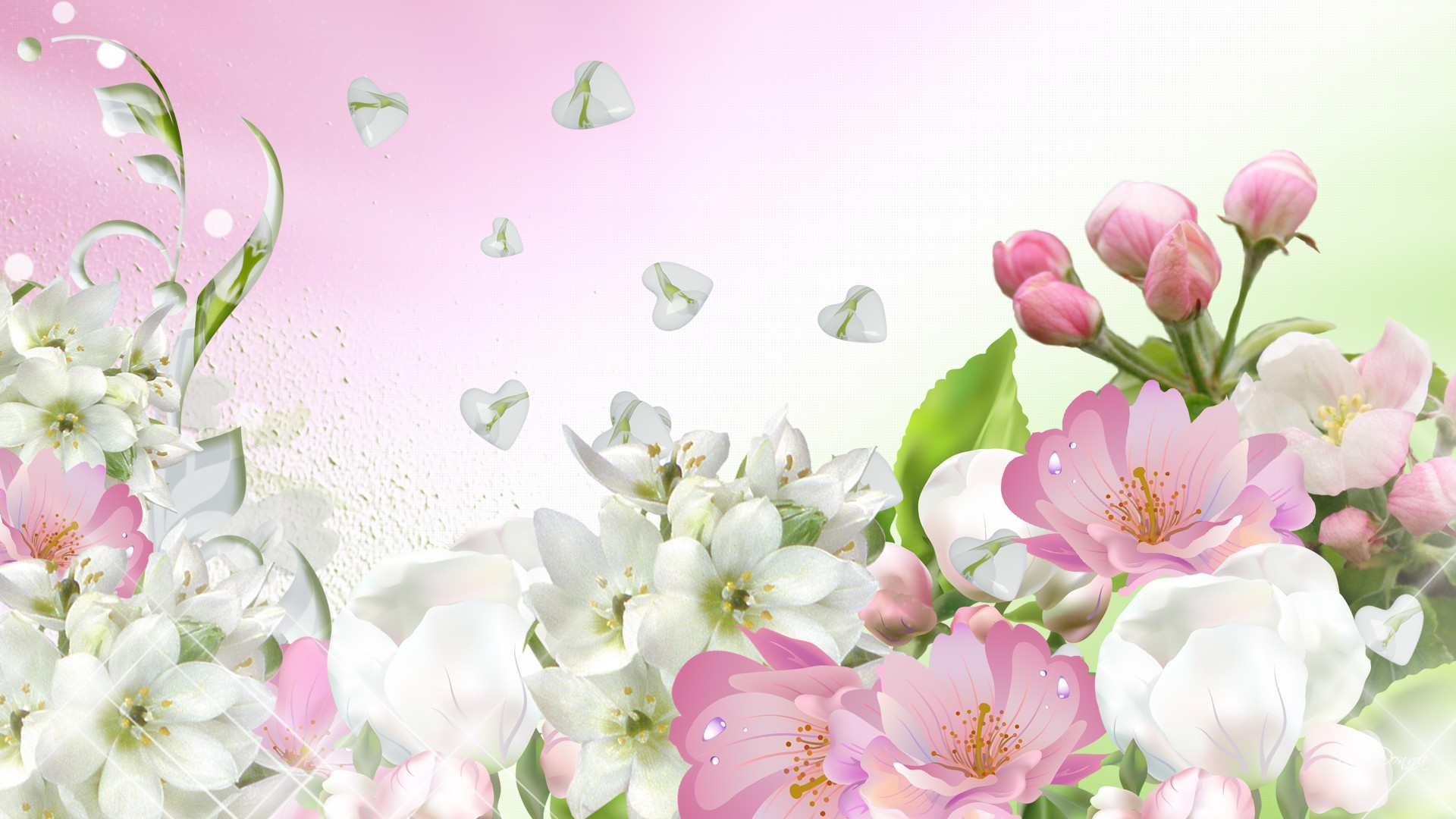 Apple Blossom Spring wallpaper   ForWallpapercom 1920x1080