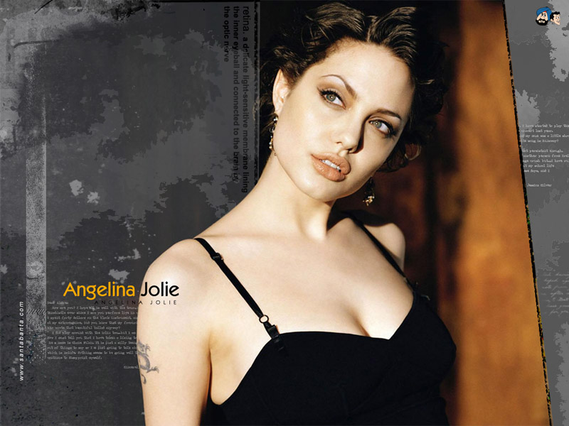 Angelina Jolie Photo Gallery 3 800x600
