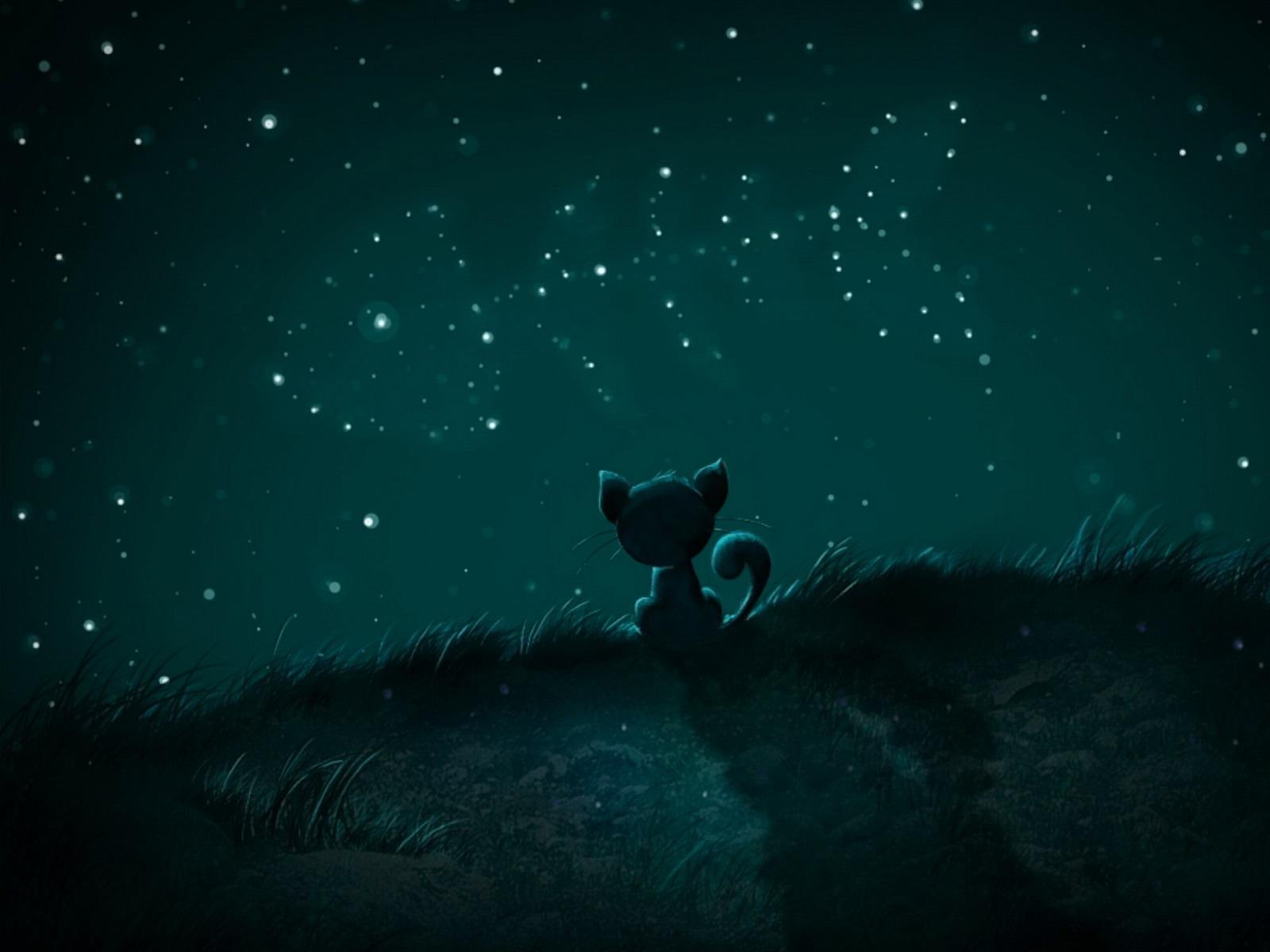 Stars Night Wallpaper Desktop HD Download Dream Wallpapers 1600x1200