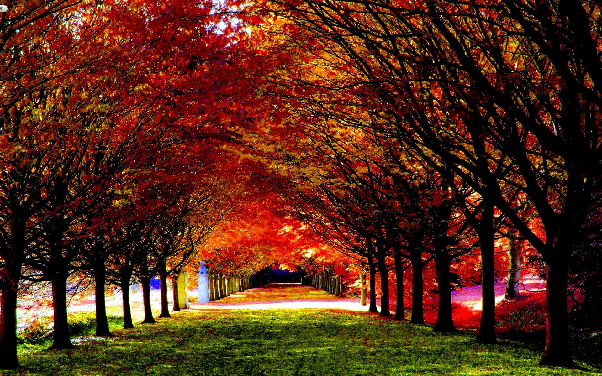 <b>Autumn Wallpaper</b> on WallpaperGet.com