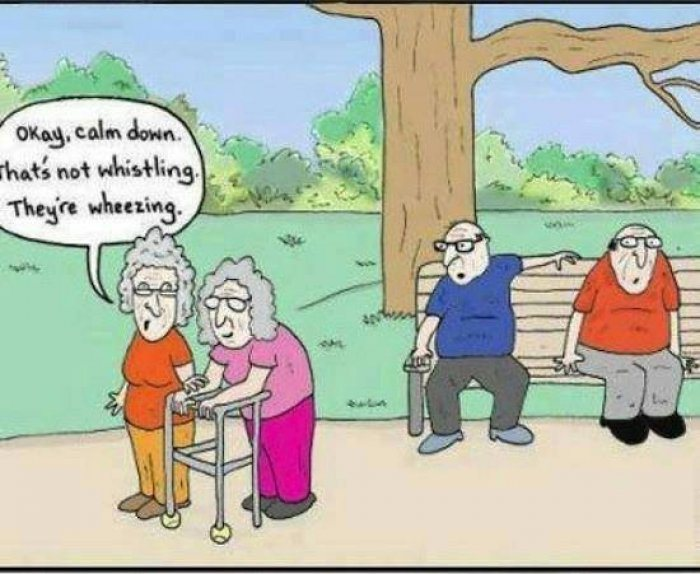 Ladies funny old Happy Birthday
