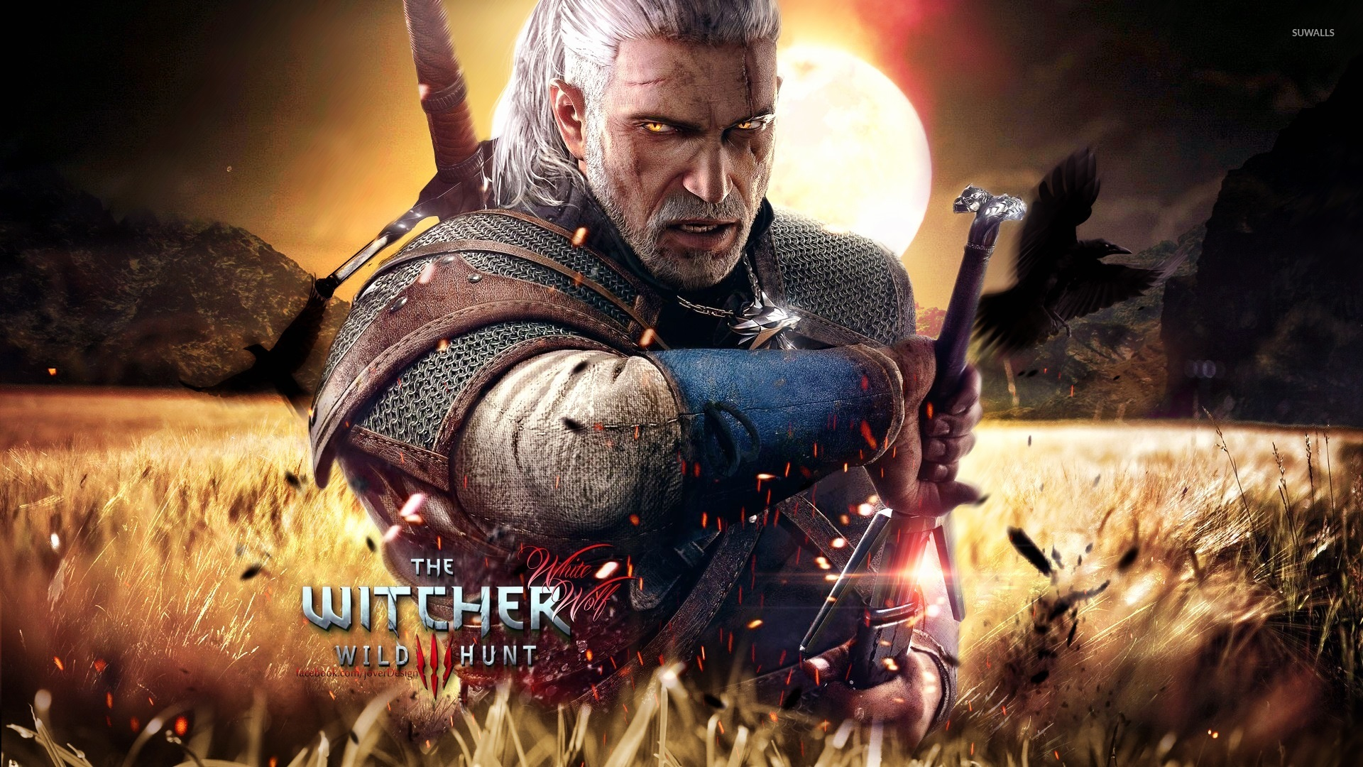 The Witcher Wild Hunt HD Wallpapers Backgrounds