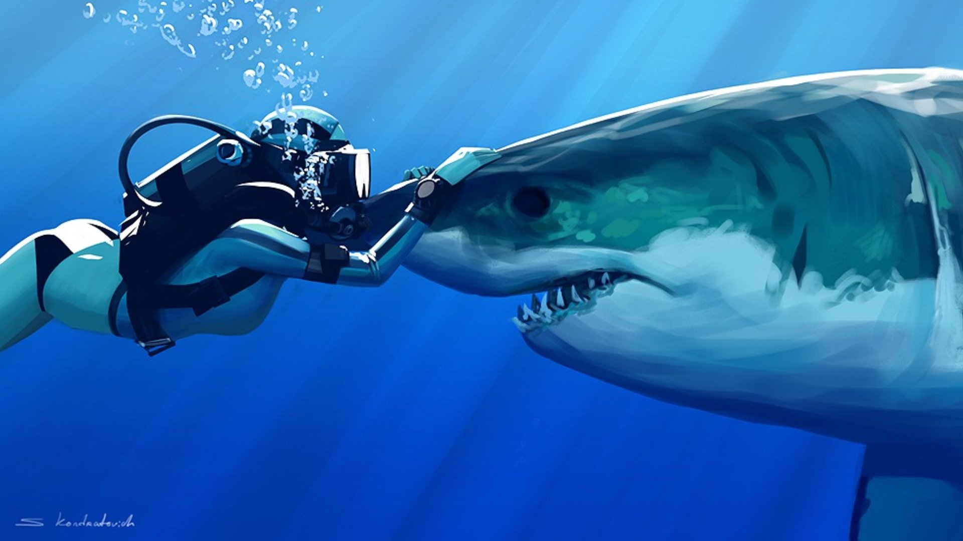 Awesome background pictures wallpapersafari - Free Great White Shark Wallpaper Wallpapersafari